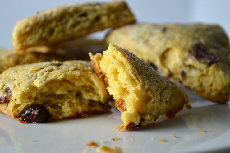 Cranberry Citrus Scones 2